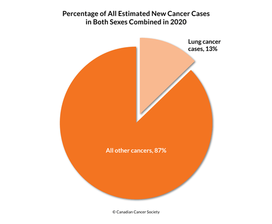 Diagram of percentage of lung cancer cases and all other cancers 2020