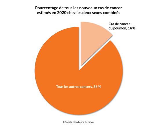Schéma du pourcentage des cas de cancer du poumon et de tous les autres cancers en 2020