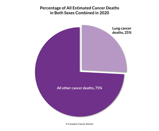 Diagram of percentage of lung cancer deaths and all other cancer deaths 2020