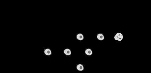 Diagram of plasma cell development