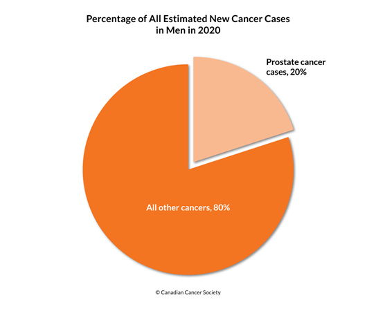 Diagram of percentage of new cancer cases with prostate cancer 2020