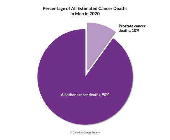 Diagram of percentage of estimated cancer deaths including prostate cancer 2020
