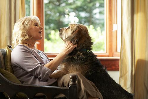 Une femme assise sur une chaise en train de caresser un chien
