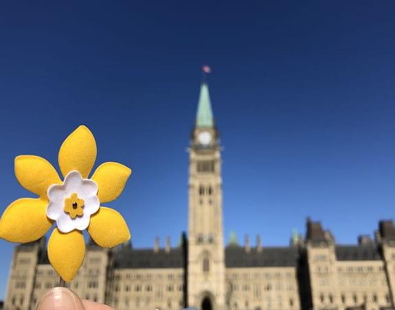 Épinglette en forme de jonquille devant les édifices du Parlement du Canada.