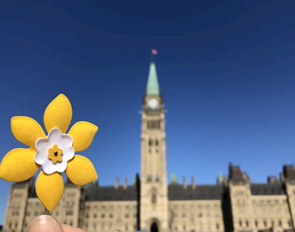 A daffodil shaped pin is held up in front of the Canadian parliament building