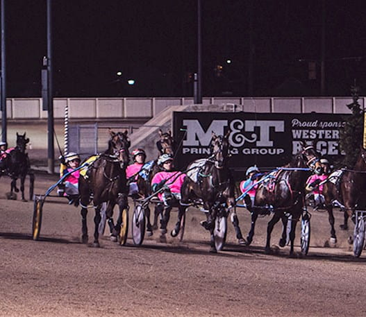 Harness racers behind horses running