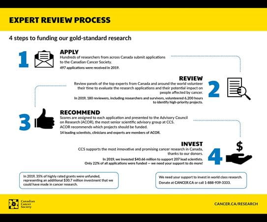 Infographic describing our expert review process in 2019