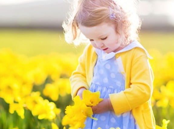 Blonde gift in a field of daffodils